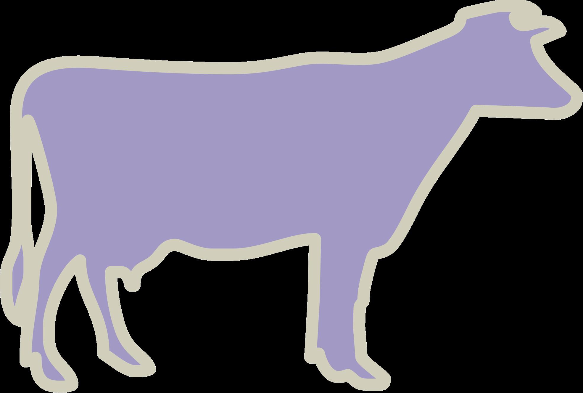 Bovinos lecheros